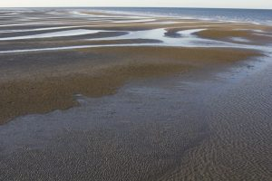 Hervey Bay at low tide