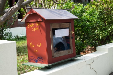 Little Library in Ashfield