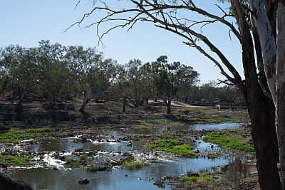 Need a tour to understand the Brewarrina Fish Traps