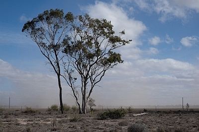 Wind and Dust in Country Australia