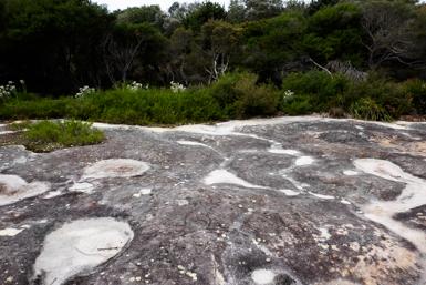 Aboriginal Carvings near Bundeena