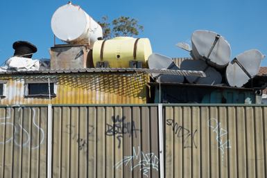 Over the fence in Caringbah