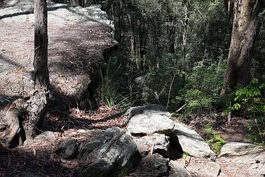 Rocky Outcrop Platypus Track