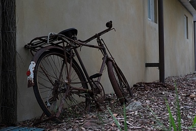 Rusted Bicycle in Castlecrag