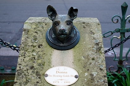 Hearing Guide dog in Guinness Book of Records Railway Square