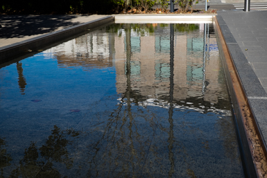 Reflections in Central Park Chippendale