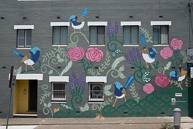 Fairy Wren Street Mural