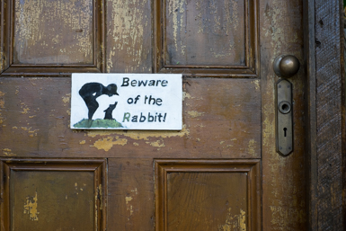 Beware of the Rabbit