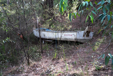 Grounded Tinny on Dangar Island