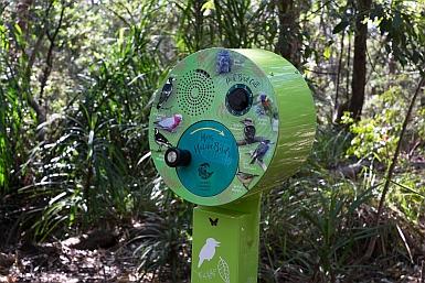 Australian Bird Calls