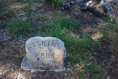 Hoskins Park Dulwich Hill