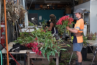 Preparing bunches of Wildflowers