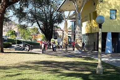 Tai Chi in front of Hornsby Aquatic Centre
