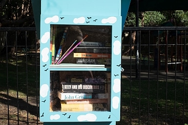 Little Library Hunter's Hill