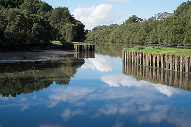 Cooks River Boat Harbour