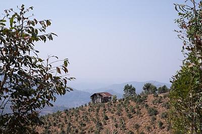 Mountainside surrounding Kalaw
