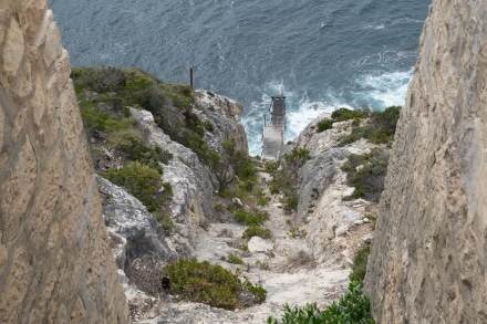Flying Fox at Cape Du Couedic Lighthouse