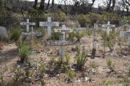 Cape Borda Cemetery
