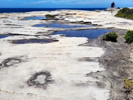 Sandstone features on Cape Solander walk to Cape Baily Lighthouse