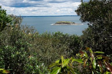 Bare Island Again