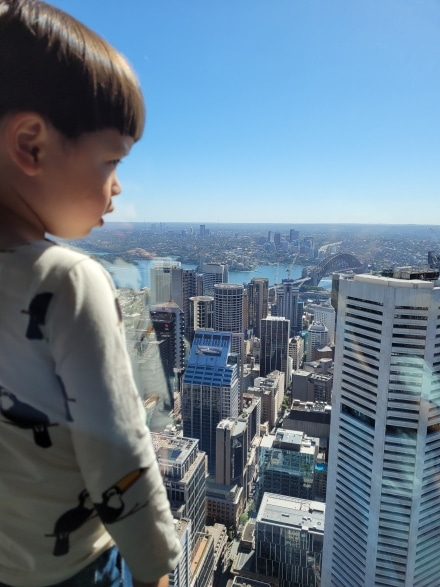 Observation deck at Sydney Tower Eye