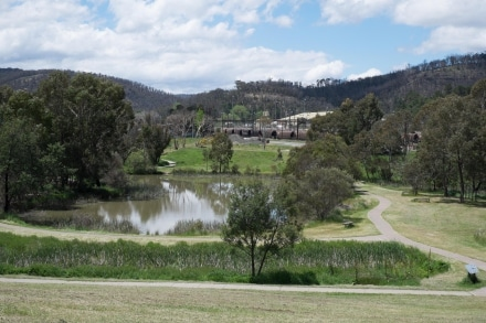 Lake Pillans is perfect for a stroll or for bird watching in Lithgow.