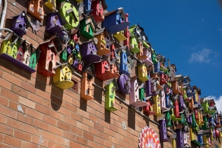 Birdhouses decorate a wall near Pioneer Park in Lithgow