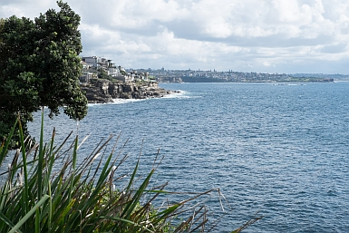 View across to Waverly Cemetery