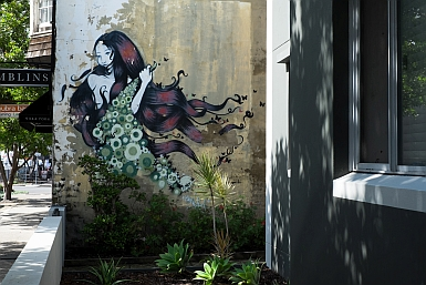 Street art McKeon Street