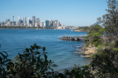Sydney Opera House and Harbour Bridge viewing point