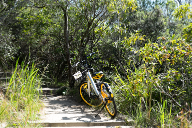 Finding Yellow Bikes for hire in Sydney
