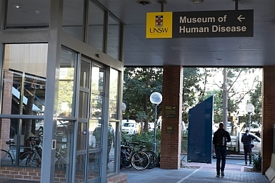 Museum of Human Diseases UNSW
