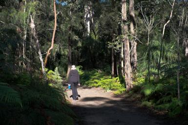 Walk around Narrabeen Lagoon
