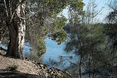 Sydney Olympic Park Parramatta Pathway