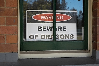 Beware of Dragons