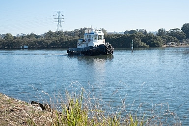 Tugboat on Parramatta River