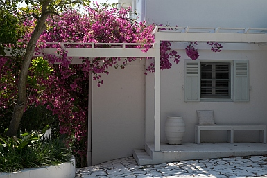 Greek decor