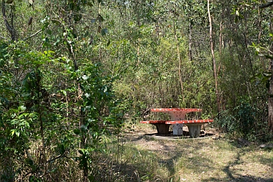 Picnic Table in Clive Park