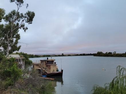 Murray River in Murray Bridge