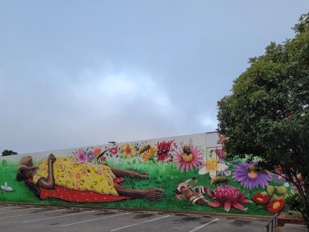 Street art in Murray Bridge