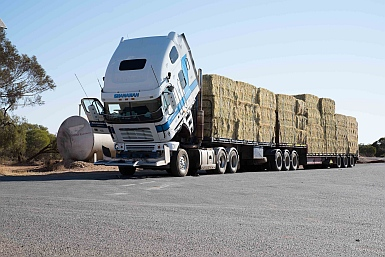 Hay supplies in the drought