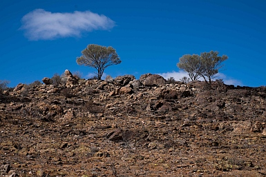 Living Desert Broken Hill