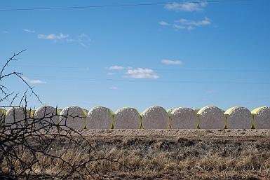 Cotton Farming in Australia