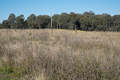 Rouse Hill Regional Park