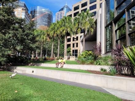 Sydney Memorial to Servicewomen in Jessie Street Gardens