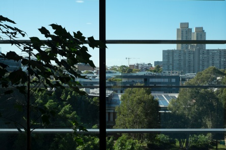 Public can access the Community Rooftop Garden at South Eveleigh.