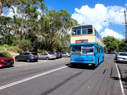 Hong Kong Buses get an outing in Sydney