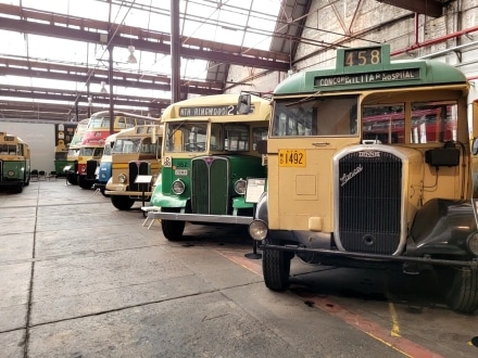 The Sydney Bus Museum displays over 70 buses in a restored Tramshed in Leichhardt