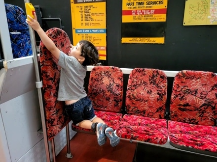 Exploring the exhibits in the Sydney Bus Museum