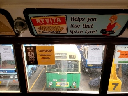 View across the buses on display at the Sydney Bus Museum